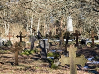 cmentarz Kluki 9