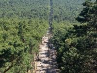 Widok z latarni - droga prowadząca na latarnię