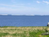 Panorama - widok z wieży nad jeziorem Łebsko