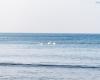 Plaża Czołpino - SPN 7