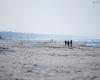 Czołpino - wydma i plaża - Słowiński Park Narodowy - 20