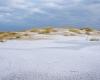 Czołpino - wydma i plaża - Słowiński Park Narodowy - 27