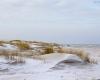 Czołpino - wydma i plaża - Słowiński Park Narodowy - 28