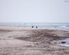 Czołpino - wydma i plaża - Słowiński Park Narodowy - 31