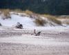 Czołpino - wydma i plaża - Słowiński Park Narodowy - 32