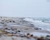 Czołpino - wydma i plaża - Słowiński Park Narodowy - 36