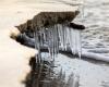 Czołpino - wydma i plaża - Słowiński Park Narodowy - 42