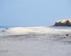 Czołpino - wydma i plaża - Słowiński Park Narodowy - 44