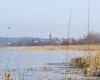 Jezioro Gardno - lodowisko - 5