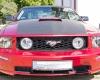 Zlot Fordów Mustangów - Ustka 2015 h