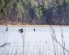 Jezioro Kozińskie