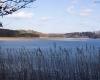 Jezioro Kozińskie 2