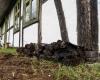 Domek w Klukach - torf