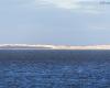 Punkt widokowy - Jezioro Łebsko - Gać 4