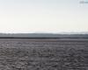 Punkt widokowy - Jezioro Łebsko - Gać 6