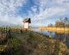 Punkt widokowy - Jezioro Łebsko - Gać 11