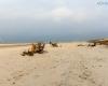 Plaża w Lędowie 7
