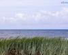 Plaża w Rowach 4