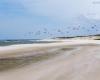 Plaża - Lędowo 2