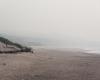 Mglista plaża