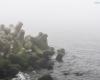 mgła Ustka - molo 4