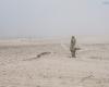 mgła Ustka - trzecie molo plaża