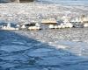 Zima - wejście do portu Ustka 5