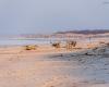 Plaża w Lędowie 6