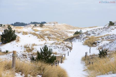 Czołpino - wydma i plaża - Słowiński Park Narodowy - 1